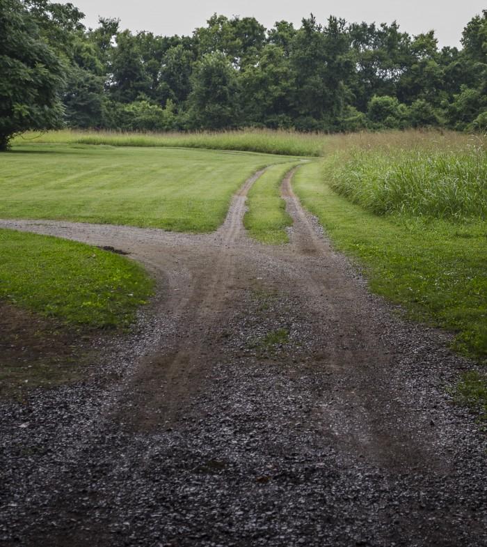 2013B Hermitage Brittany Tytlandsvik dirt path 2