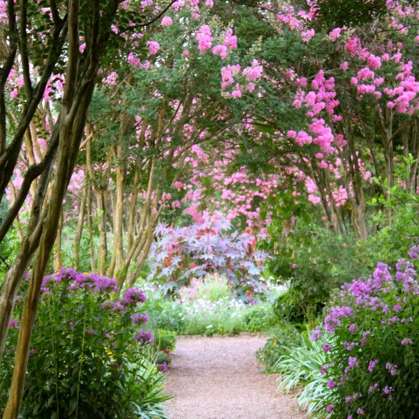 Path Through the Flowers at The Hermitage Garden
