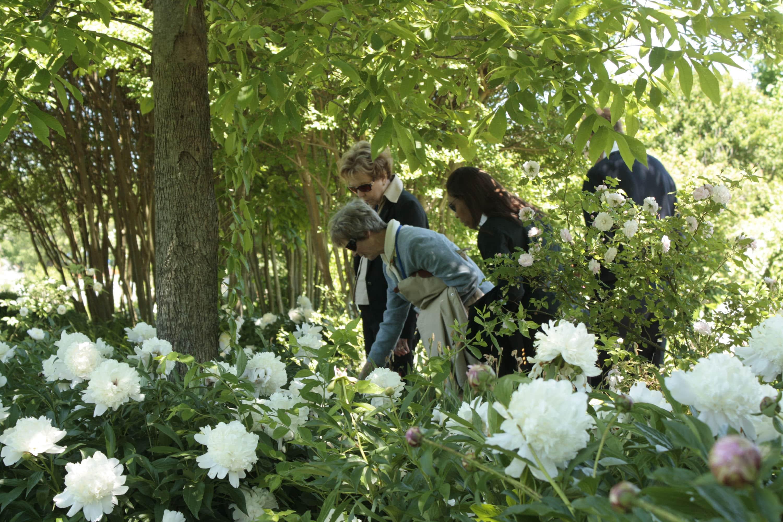 Visitors Explore The Garden At Andrew Jacksonu0027s Hermitage In Nashville, TN