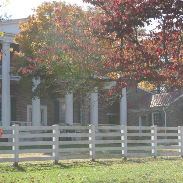 Fall Leaves Hide The Hermitage Mansion