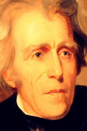 Zoom of Andrew Jackson Portrait