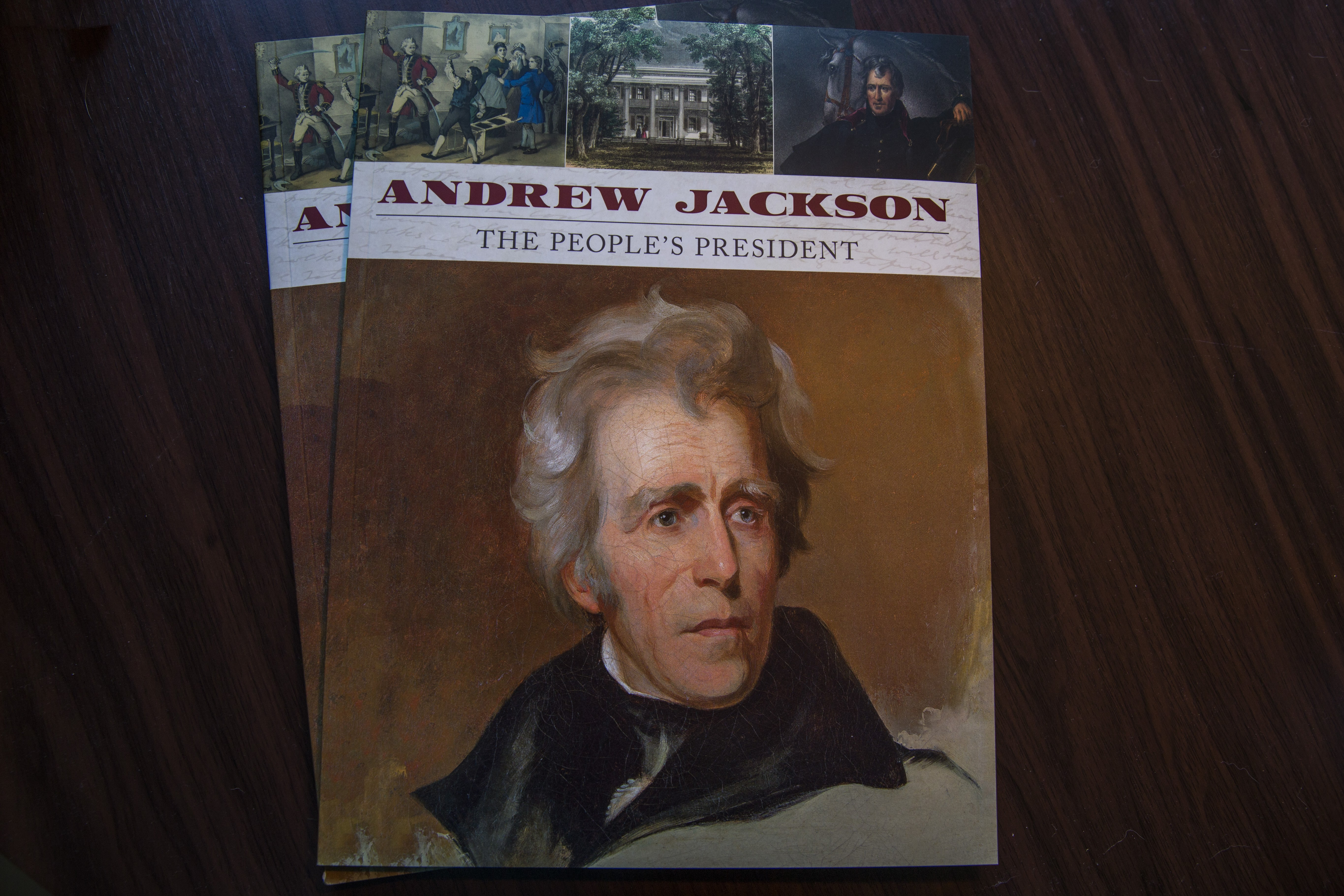 was andrew jackson a good president